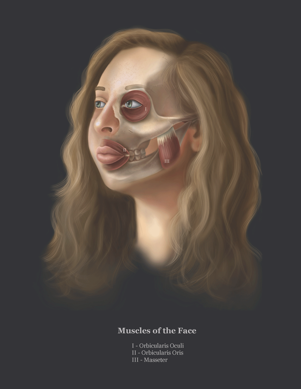 Scientific Illustration by Julia Lunavictoria of a self portrait depicting internal face anatomy