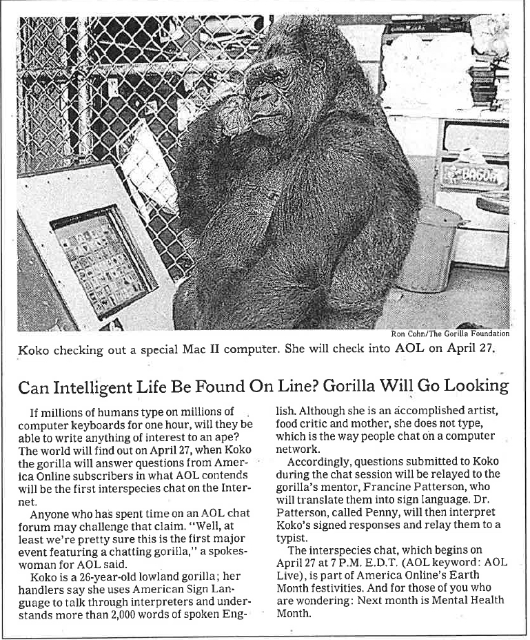 Scan of New York Times Article of Koko the Gorilla Chat