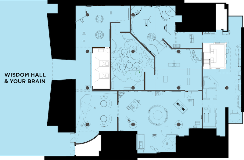 Wisdom Hall and Your Brain Floor Plan